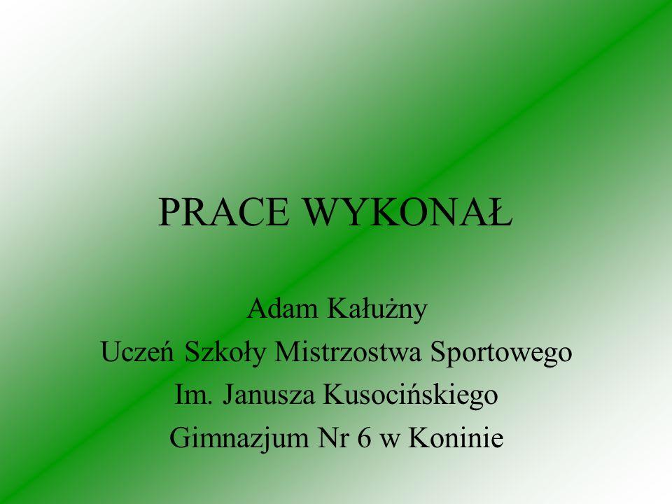 PRACE WYKONAŁ Adam Kałużny Uczeń Szkoły Mistrzostwa Sportowego Im.