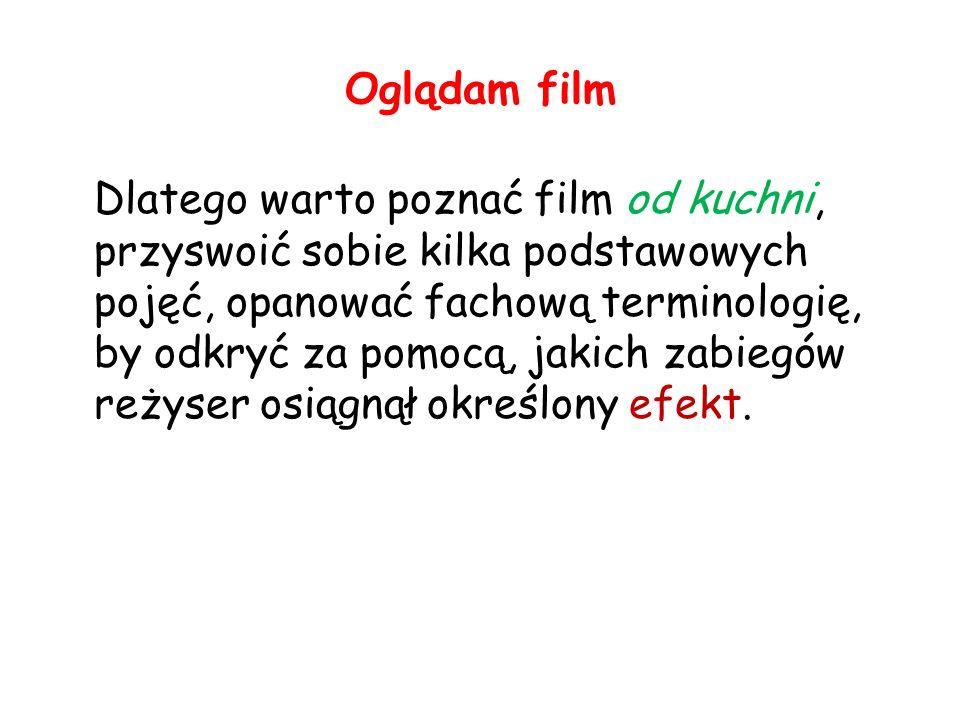 Oglądam film Poloniści nie powinni obawiać się podejmowania treści związanych z filmem, nie czynią tego bowiem jako filmoznawcy, lecz humaniści – odbiorcy sztuki, otwarci na różne formy przekazu, różne konwencje, tworzywa sztuki, obiegi kultury.