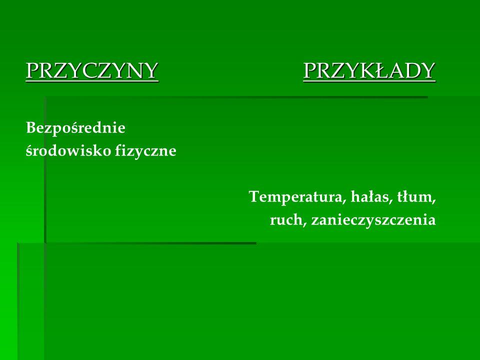 PRZYCZYNY PRZYKŁADY Bezpośrednie środowisko fizyczne Temperatura, hałas, tłum, ruch, zanieczyszczenia