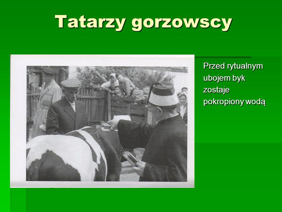 Tatarzy gorzowscy Przed rytualnym ubojem byk zostaje pokropiony wodą