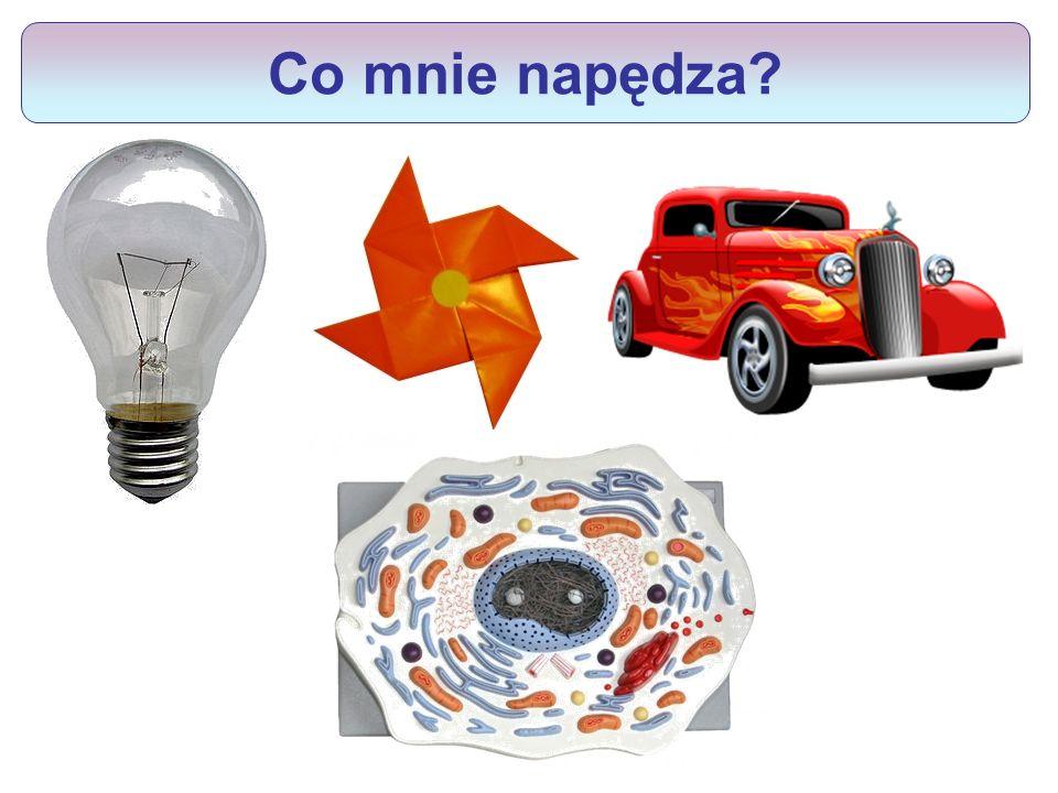 Paliwem komórek jest ATP CO2 + H2O glukoza w ATP