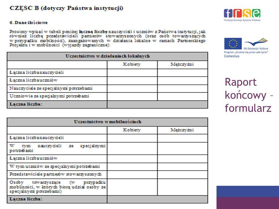 Raport końcowy – formularz