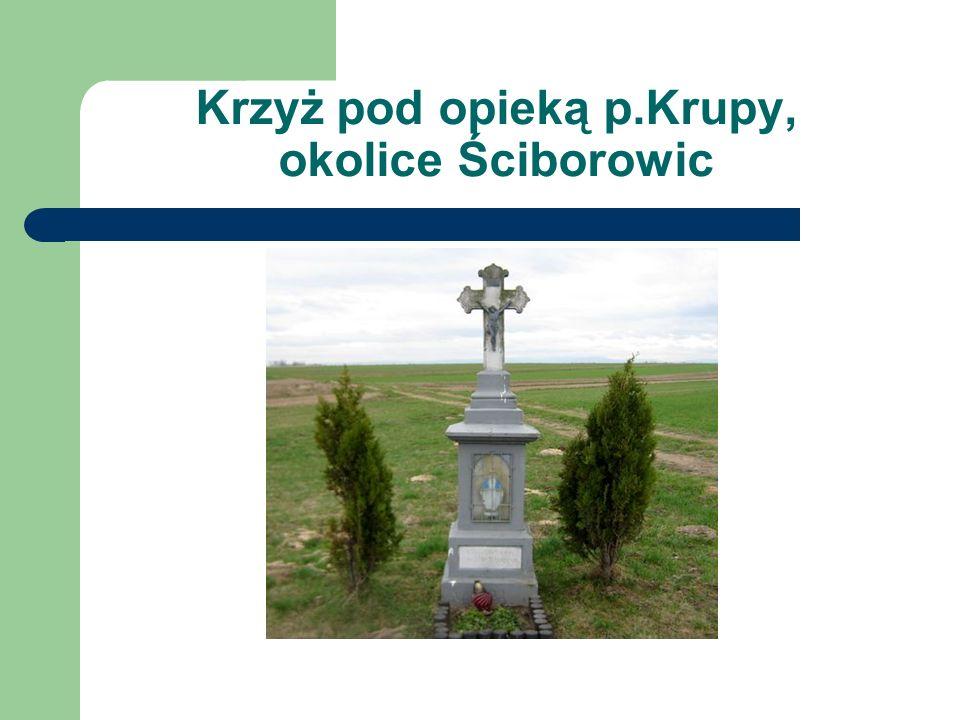 Krzyż pod opieką p.Krupy, okolice Ściborowic