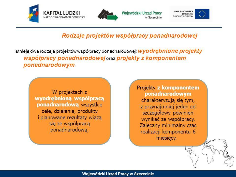 Wojewódzki Urząd Pracy w Szczecinie Projekty z komponentem ponadnarodowym charakteryzują się tym, iż przynajmniej jeden cel szczegółowy powinien wynik