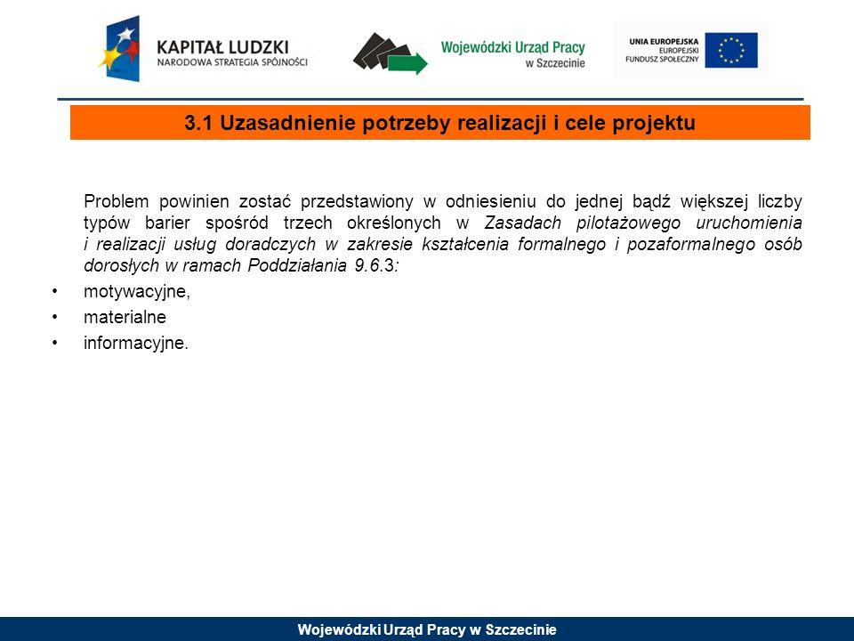 Wojewódzki Urząd Pracy w Szczecinie Problem powinien zostać przedstawiony w odniesieniu do jednej bądź większej liczby typów barier spośród trzech okr