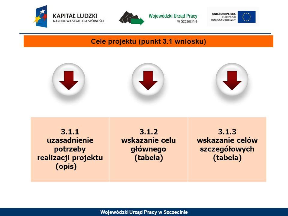 Wojewódzki Urząd Pracy w Szczecinie Cele projektu (punkt 3.1 wniosku) 3.1.1 uzasadnienie potrzeby realizacji projektu (opis) 3.1.2 wskazanie celu głównego (tabela) 3.1.3 wskazanie celów szczegółowych (tabela)
