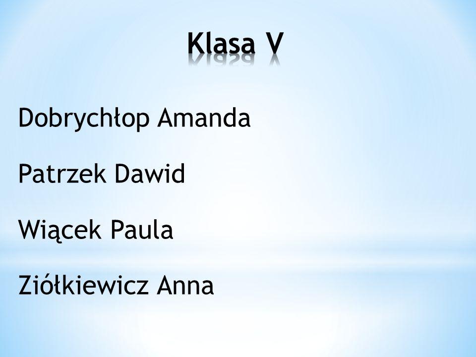 Dobrychłop Amanda Patrzek Dawid Wiącek Paula Ziółkiewicz Anna