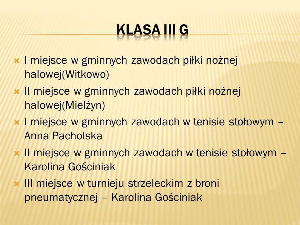 I miejsce w gminnych zawodach piłki nożnej halowej(Witkowo) II miejsce w gminnych zawodach piłki nożnej halowej(Mielżyn) I miejsce w gminnych zawodach