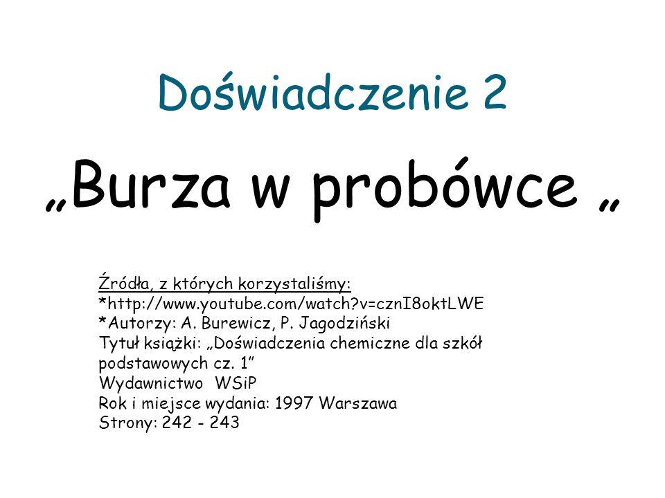 Doświadczenie 2 Burza w probówce Źródła, z których korzystaliśmy: *http://www.youtube.com/watch?v=cznI8oktLWE *Autorzy: A. Burewicz, P. Jagodziński Ty