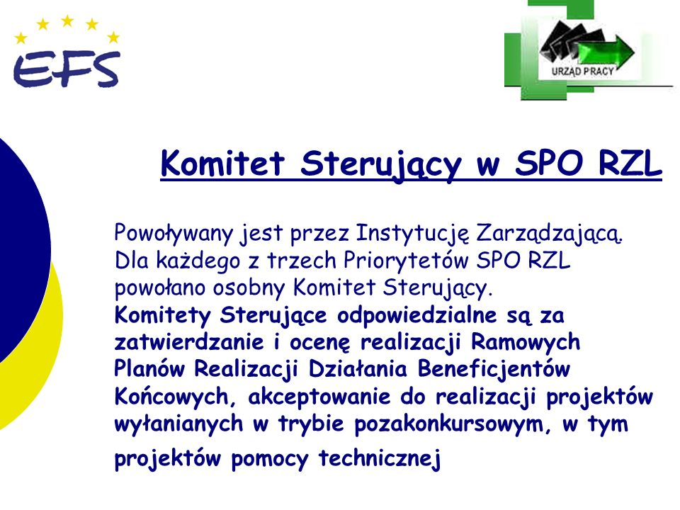 10 Komitet Sterujący w SPO RZL Powoływany jest przez Instytucję Zarządzającą. Dla każdego z trzech Priorytetów SPO RZL powołano osobny Komitet Sterują