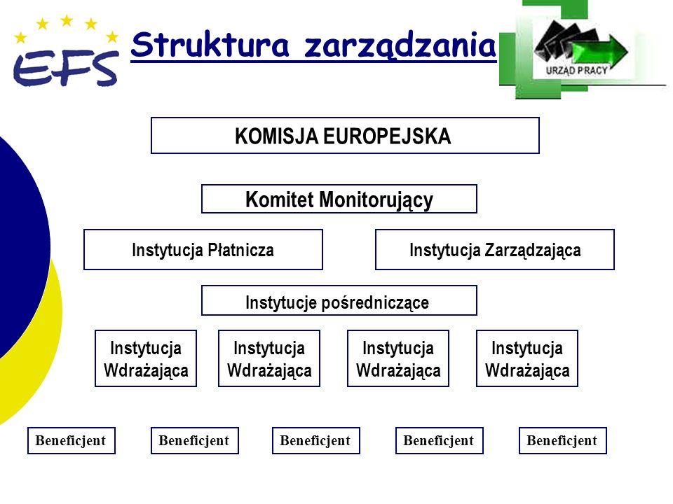 3 3 Struktura zarządzania Komitet Monitorujący KOMISJA EUROPEJSKA Instytucje pośredniczące Instytucja ZarządzającaInstytucja Płatnicza Beneficjent Instytucja Wdrażająca