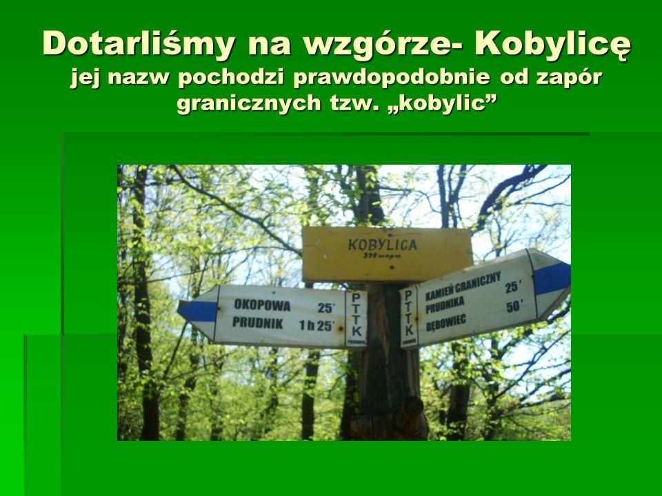 Dotarliśmy na wzgórze- Kobylicę jej nazw pochodzi prawdopodobnie od zapór granicznych tzw. kobylic