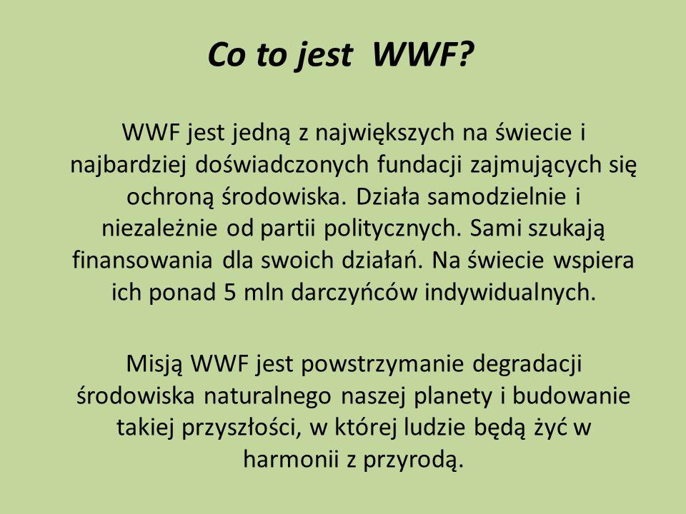 Co to jest WWF? WWF jest jedną z największych na świecie i najbardziej doświadczonych fundacji zajmujących się ochroną środowiska. Działa samodzielnie