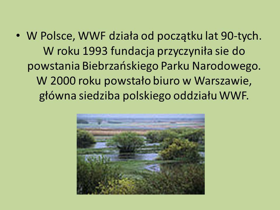 W Polsce, WWF działa od początku lat 90-tych. W roku 1993 fundacja przyczyniła sie do powstania Biebrzańskiego Parku Narodowego. W 2000 roku powstało