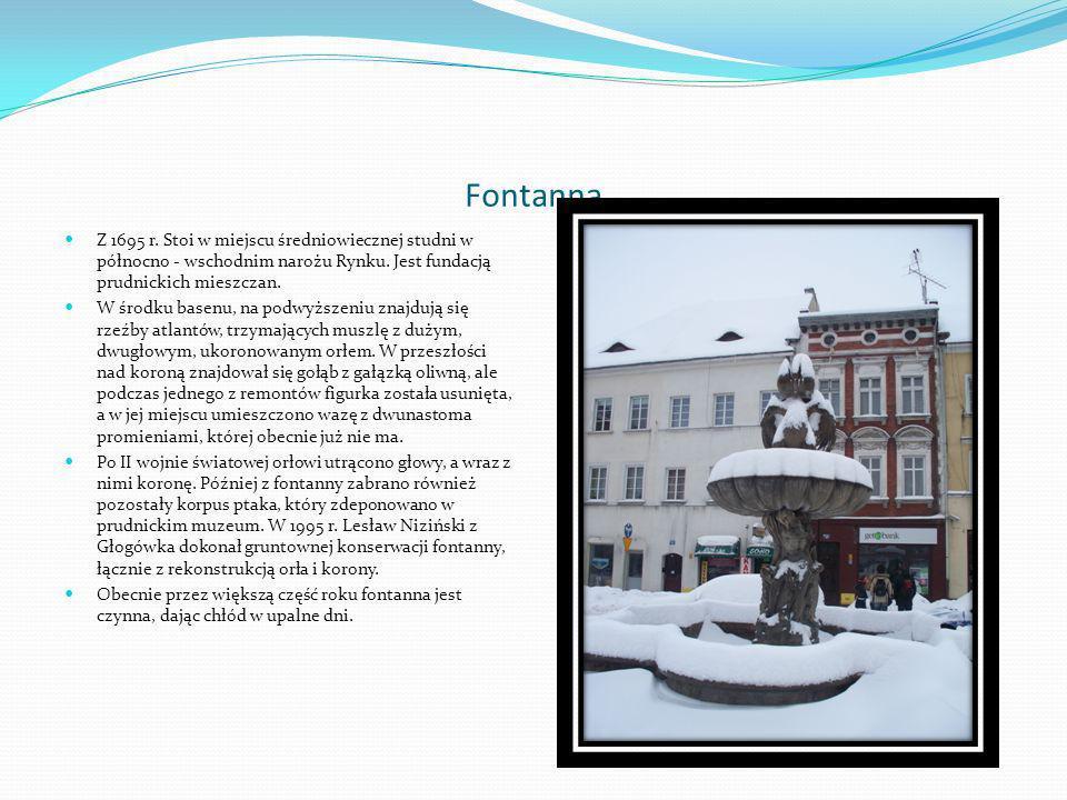 Willa przy ulicy Nyskiej W willi znajdował się najsłynniejszy dorobek Maxa Pikusa, tak zwana Biblioteka Śląska .