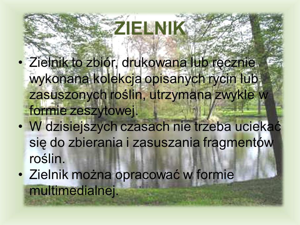 ZIELNIK Zielnik to zbiór, drukowana lub ręcznie wykonana kolekcja opisanych rycin lub zasuszonych roślin, utrzymana zwykle w formie zeszytowej. W dzis