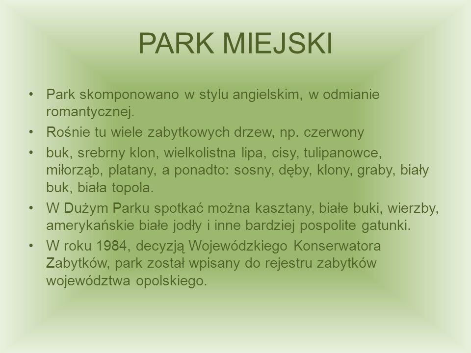 PARK MIEJSKI Park skomponowano w stylu angielskim, w odmianie romantycznej. Rośnie tu wiele zabytkowych drzew, np. czerwony buk, srebrny klon, wielkol