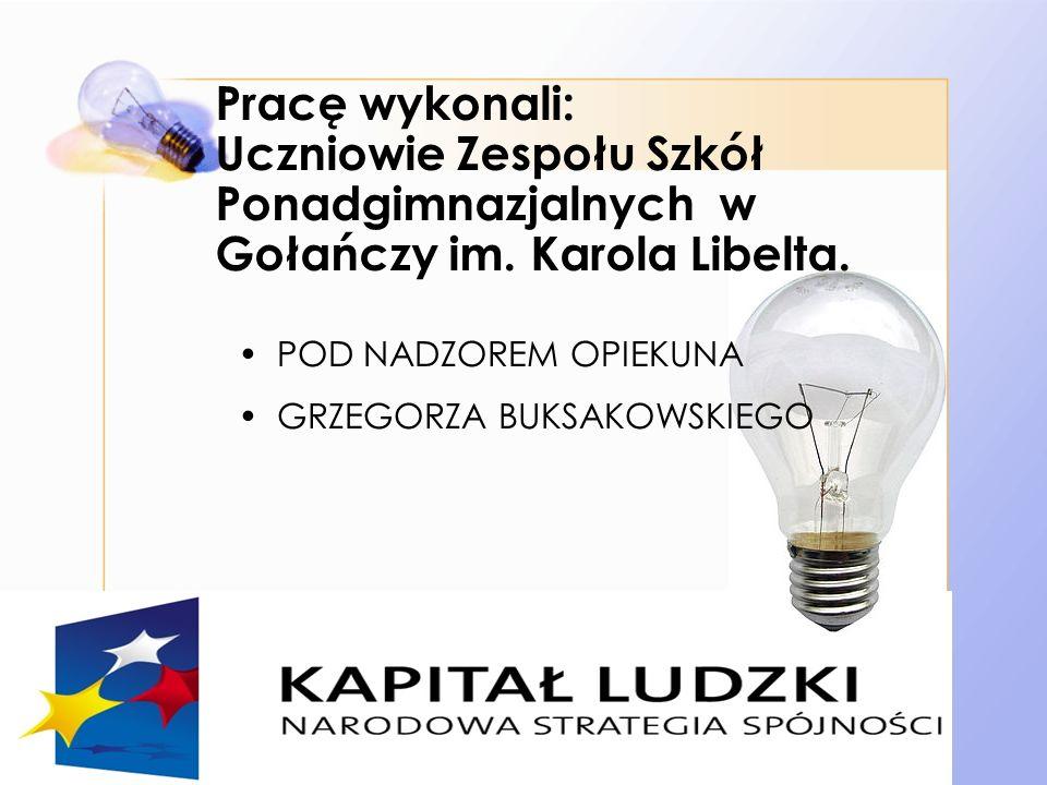 Pracę wykonali: Uczniowie Zespołu Szkół Ponadgimnazjalnych w Gołańczy im.