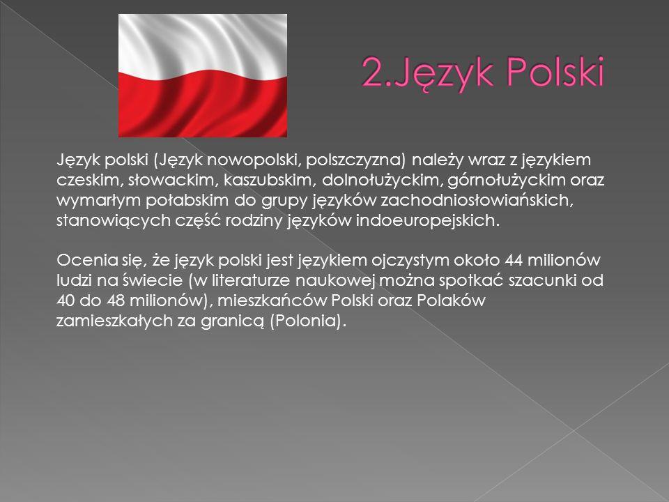 Język polski (Język nowopolski, polszczyzna) należy wraz z językiem czeskim, słowackim, kaszubskim, dolnołużyckim, górnołużyckim oraz wymarłym połabskim do grupy języków zachodniosłowiańskich, stanowiących część rodziny języków indoeuropejskich.