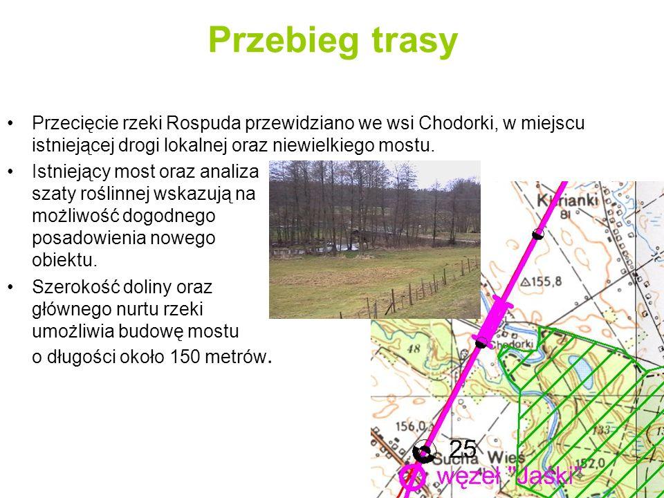 Przebieg trasy Przyjęto podział trasy wariantu alternatywnego, liczącej 41,25 km długości, na następujące 3 odcinki: 1.odcinek zachodniej obwodnicy Suwałk od węzła Szwajcaria do węzła Lotnisko (wariant Ia) długości około 10,8 km