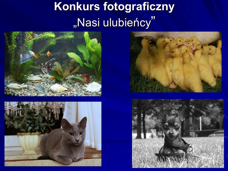 Konkurs fotograficzny Nasi ulubieńcy Konkurs fotograficzny Nasi ulubieńcy