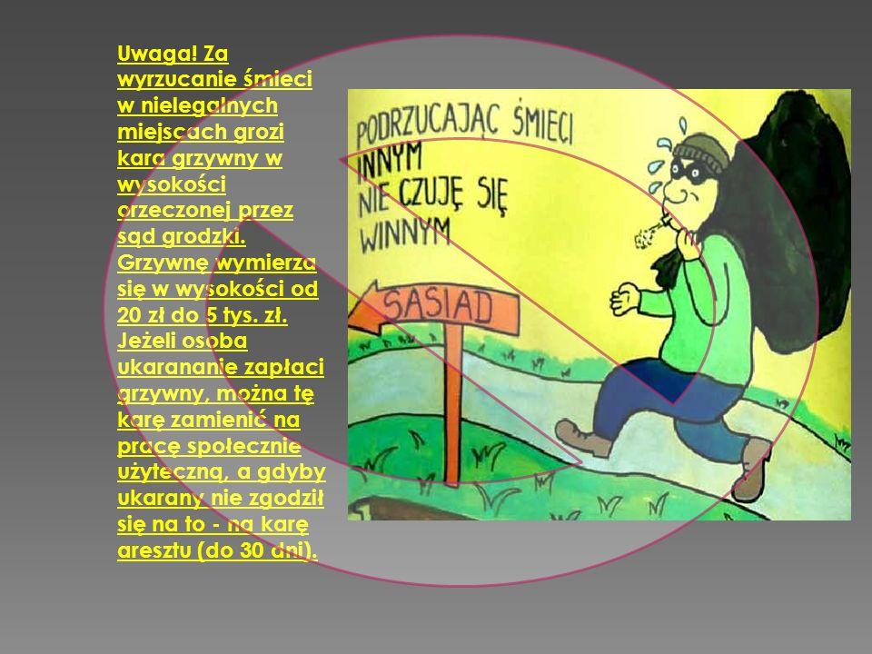 Uwaga! Za wyrzucanie śmieci w nielegalnych miejscach grozi kara grzywny w wysokości orzeczonej przez sąd grodzki. Grzywnę wymierza się w wysokości od