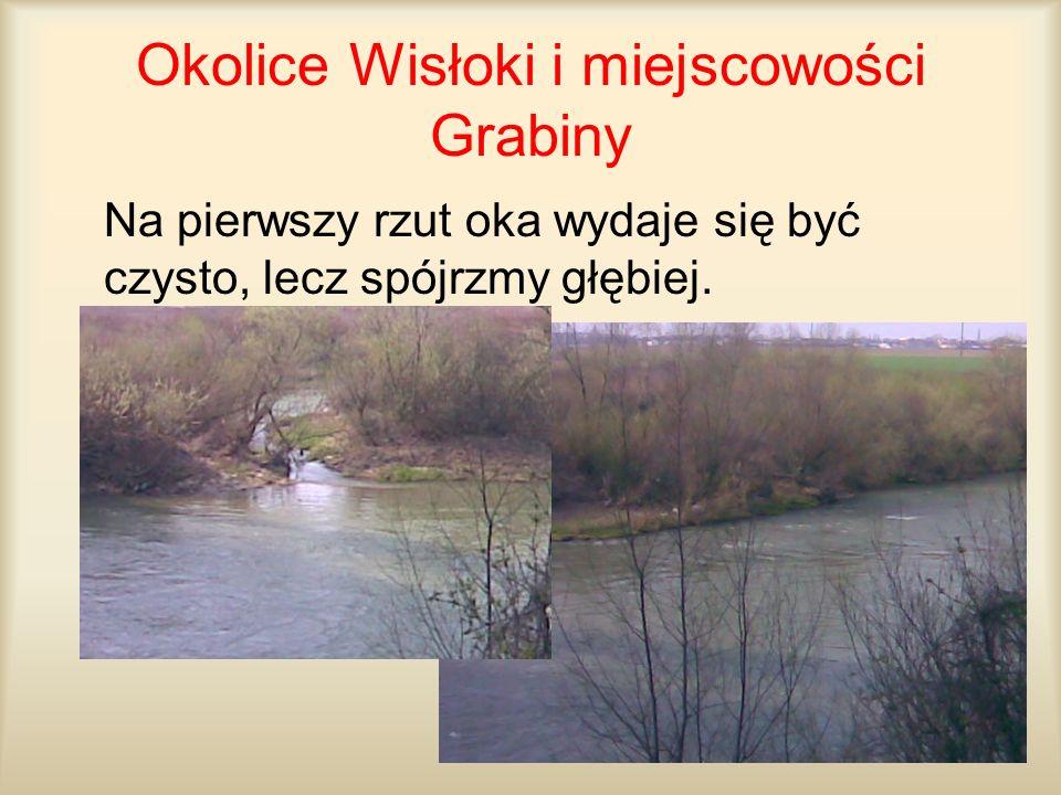 Okolice Wisłoki i miejscowości Grabiny Na pierwszy rzut oka wydaje się być czysto, lecz spójrzmy głębiej.
