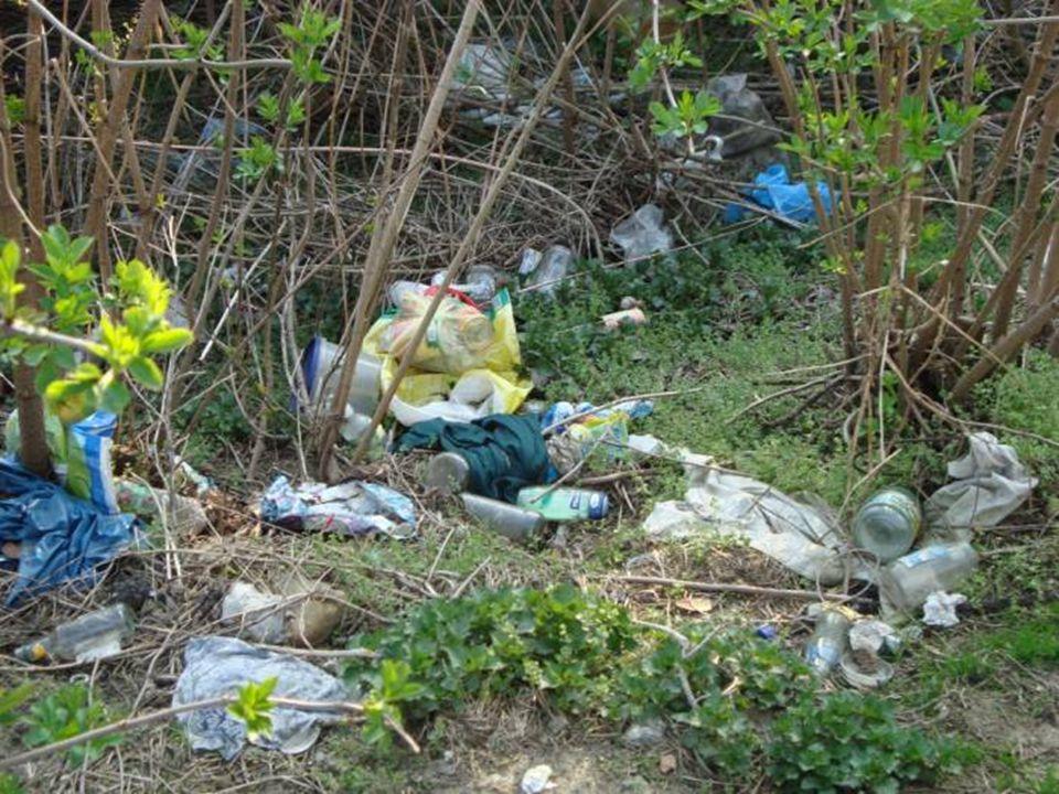 Wola Żyrakowska naprzeciw ośrodka wypoczynkowego Jałowce Szklane, plastikowe butelki, kanistry, opony, odpady, folie, gruzy, szkło znajdowały się w zwałach ziemi.