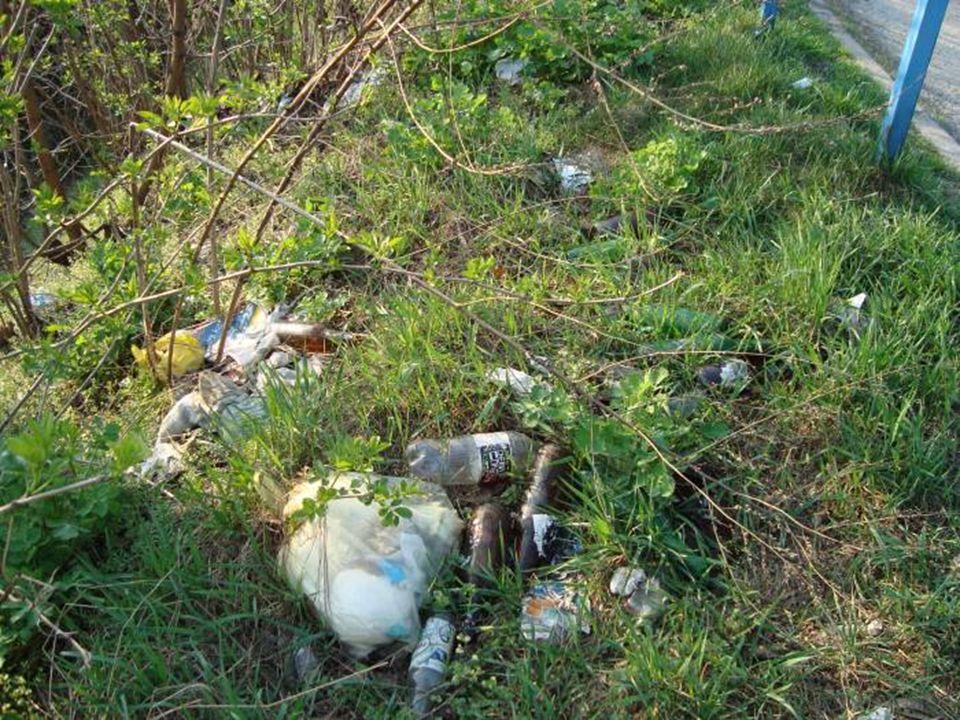 Okolice Zawierzbia Rodzaje śmieci występujących w tym miejscu: - butelki plastikowe, - szklane, - kanistry.