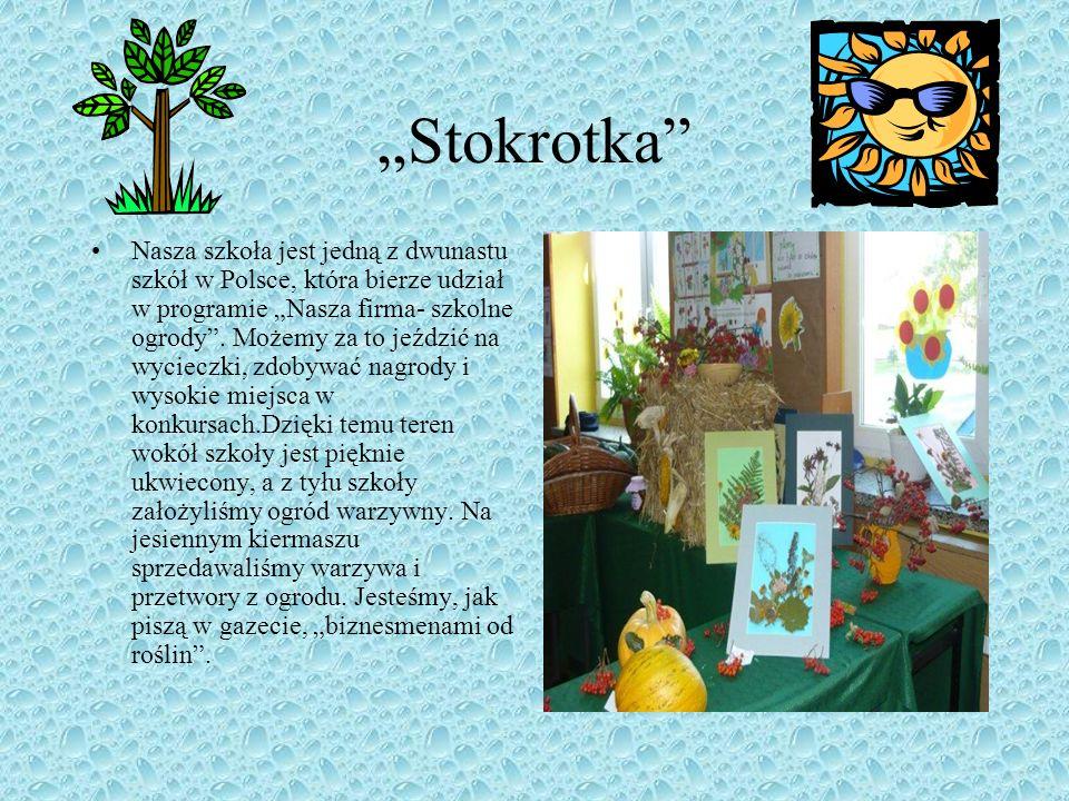 Stokrotka Nasza szkoła jest jedną z dwunastu szkół w Polsce, która bierze udział w programie Nasza firma- szkolne ogrody.