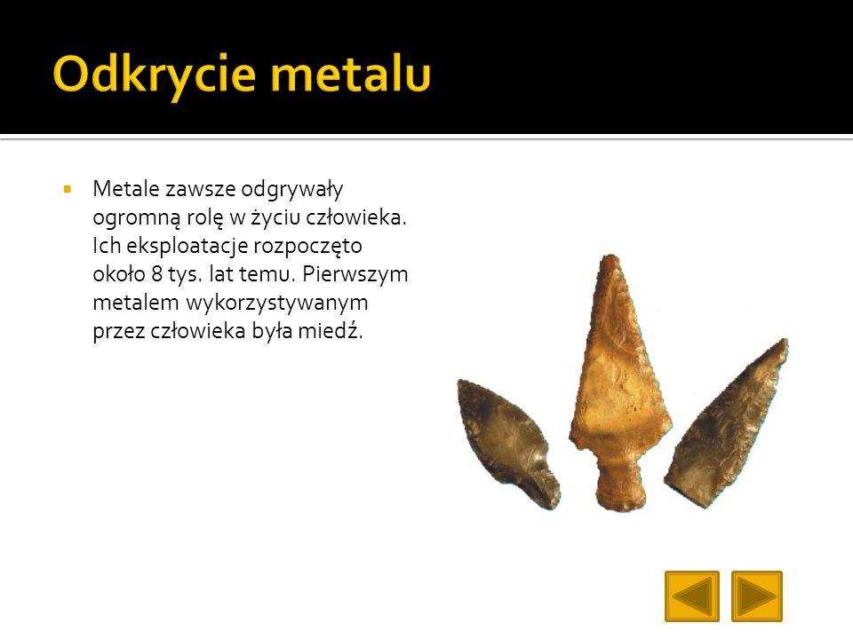 Metale zawsze odgrywały ogromną rolę w życiu człowieka. Ich eksploatacje rozpoczęto około 8 tys. lat temu. Pierwszym metalem wykorzystywanym przez czł