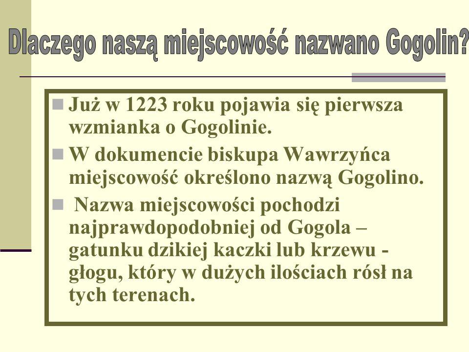 Już w 1223 roku pojawia się pierwsza wzmianka o Gogolinie.