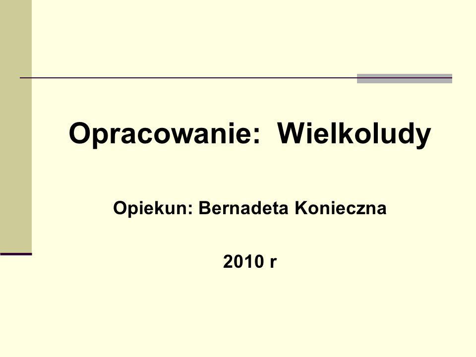 Bibliografia Kserokopie znajdującej się w Gminnej Bibliotece Publicznej w Gogolinie. Źródło nieznane. Materiały udostępnione przez panią Adelę Dyga Jó