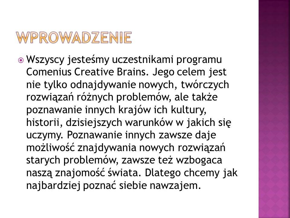 Wszyscy jesteśmy uczestnikami programu Comenius Creative Brains.