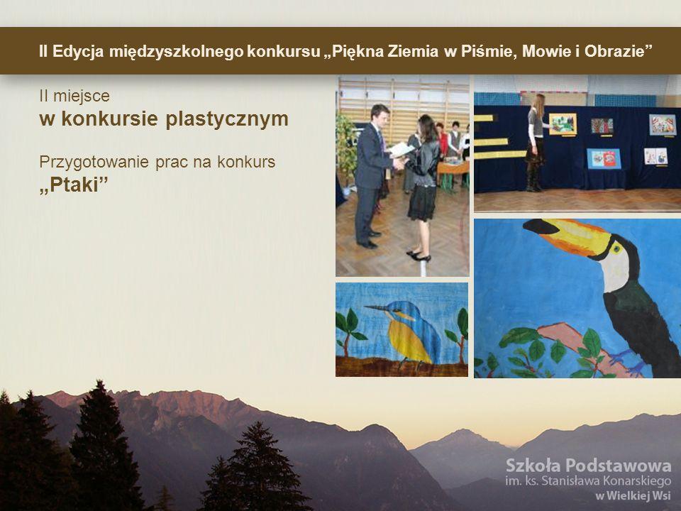 II Edycja międzyszkolnego konkursu Piękna Ziemia w Piśmie, Mowie i Obrazie II miejsce w konkursie plastycznym Przygotowanie prac na konkurs Ptaki