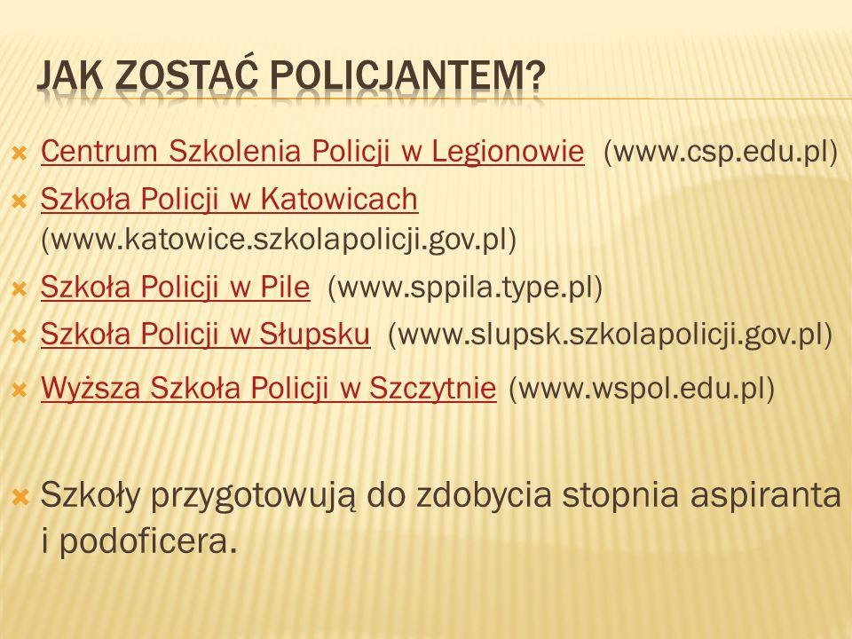 Centrum Szkolenia Policji w Legionowie (www.csp.edu.pl) Centrum Szkolenia Policji w Legionowie Szkoła Policji w Katowicach (www.katowice.szkolapolicji