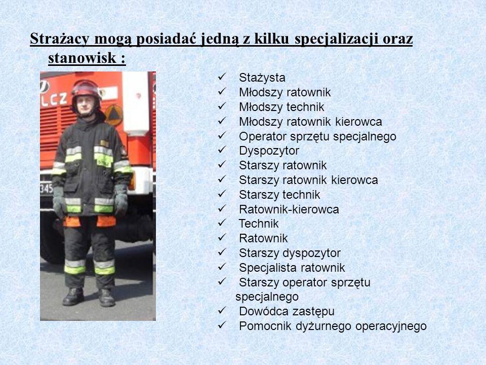 Strażacy mogą posiadać jedną z kilku specjalizacji oraz stanowisk : Stażysta Młodszy ratownik Młodszy technik Młodszy ratownik kierowca Operator sprzę
