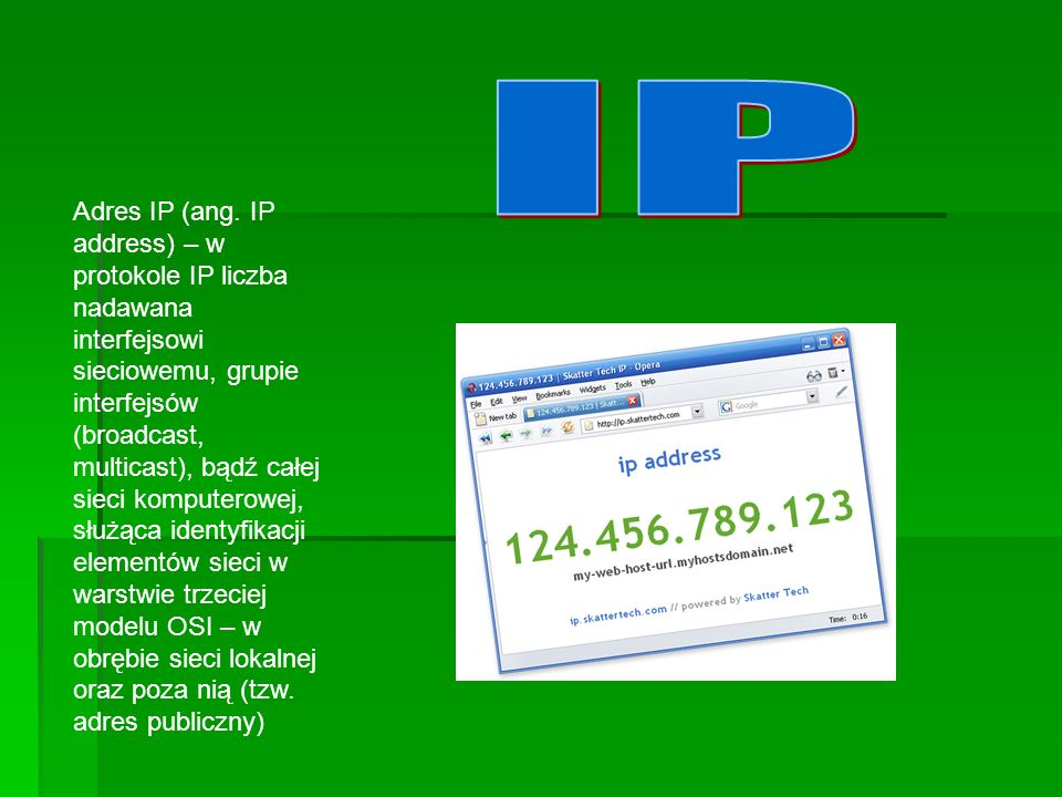 Adres IP (ang.