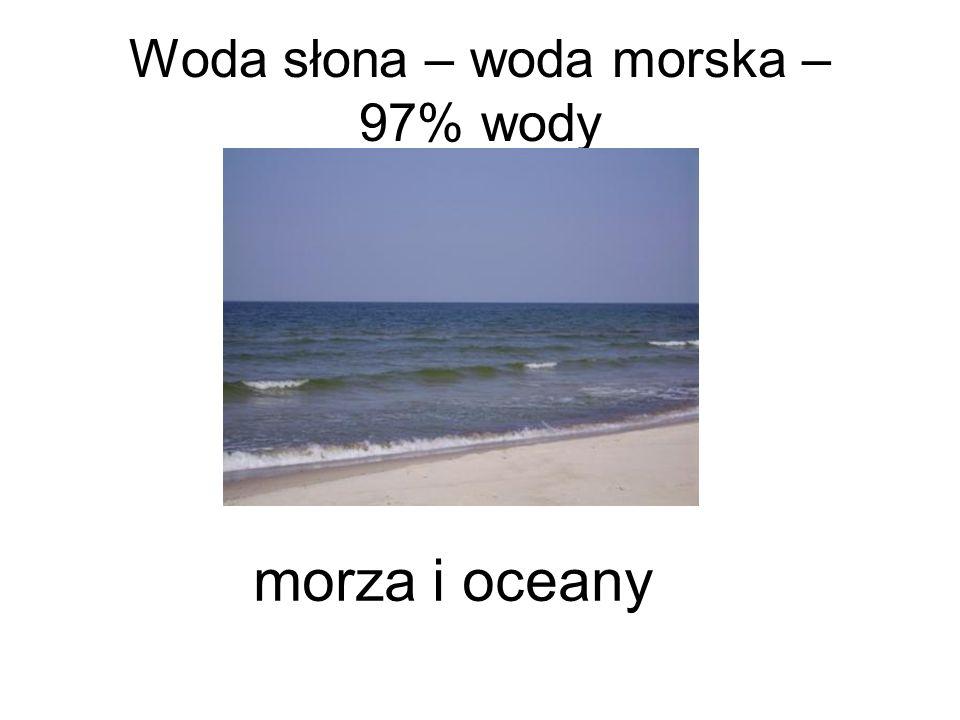 Dlaczego woda morska jest słona?
