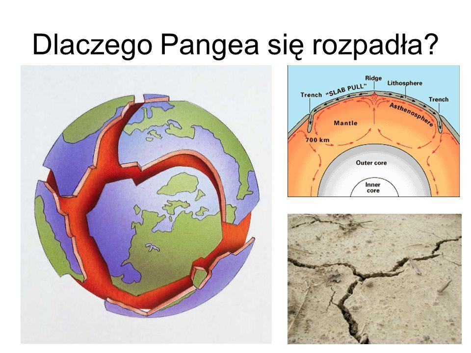 Dlaczego Pangea się rozpadła?
