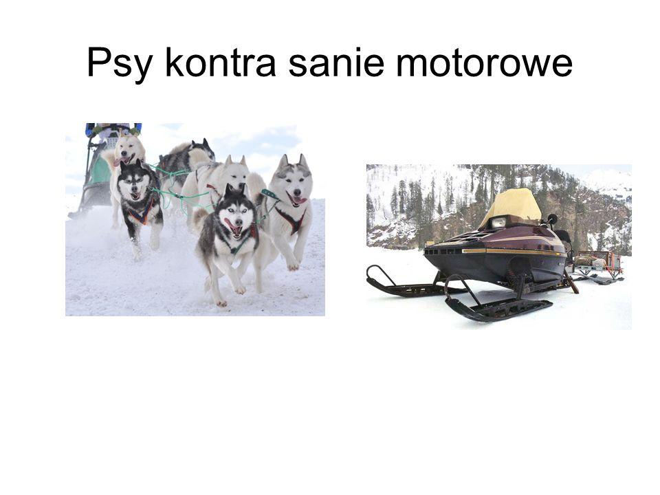 Psy kontra sanie motorowe