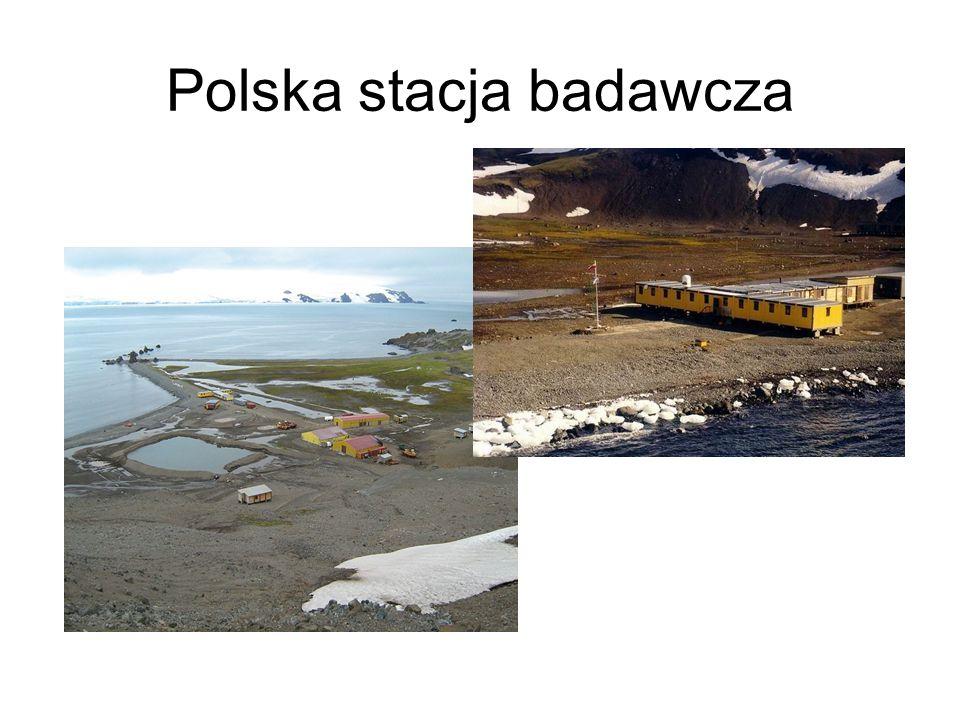 Projekt Organizujemy na mapach Antarktydy wyprawę z polskiej stacji badawczej na Wyspie Króla Jerzego na Biegun Południowy: musimy ustalić, czym lecimy, jaki zespół (kto im jest i na czym się zna), jakie umiejętności muszą mieć uczestnicy, jaki zabieramy sprzęt, jaką bierzemy żywność, w jaki sposób się poruszamy itp.