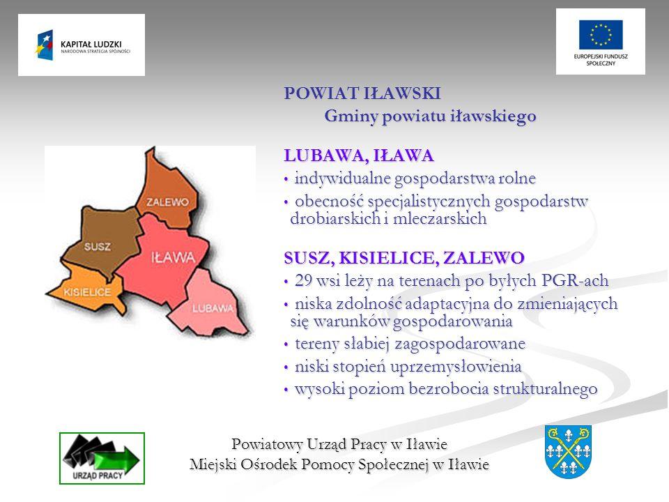 Powiatowy Urząd Pracy w Iławie Miejski Ośrodek Pomocy Społecznej w Iławie POWIAT IŁAWSKI Gminy powiatu iławskiego LUBAWA, IŁAWA indywidualne gospodars