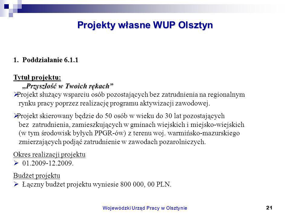 Wojewódzki Urząd Pracy w Olsztynie21 Projekty własne WUP Olsztyn 1.