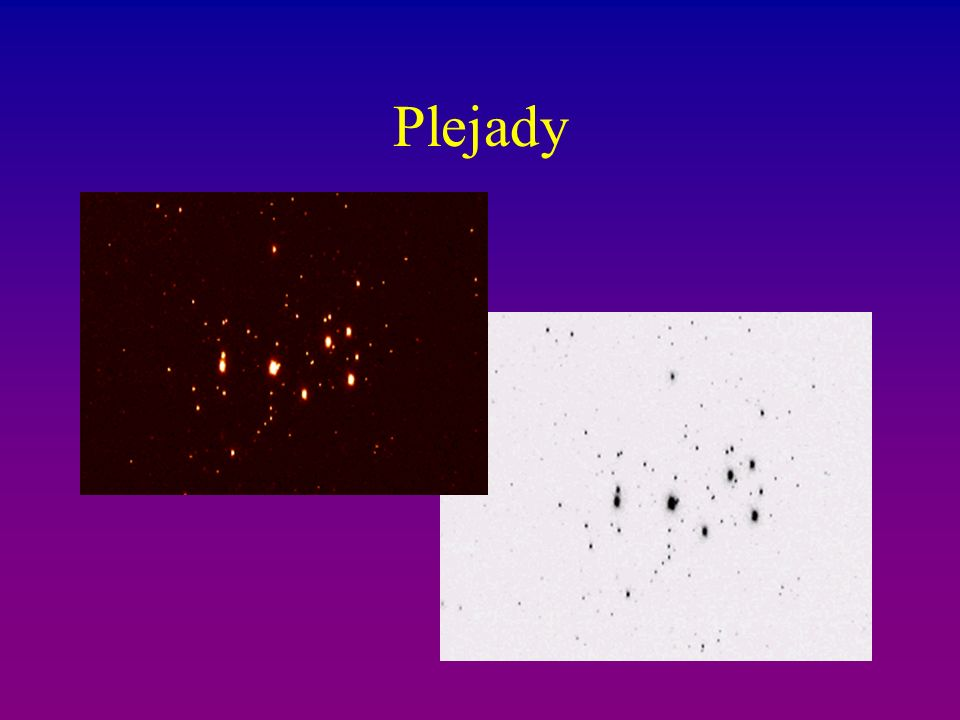 Plejady