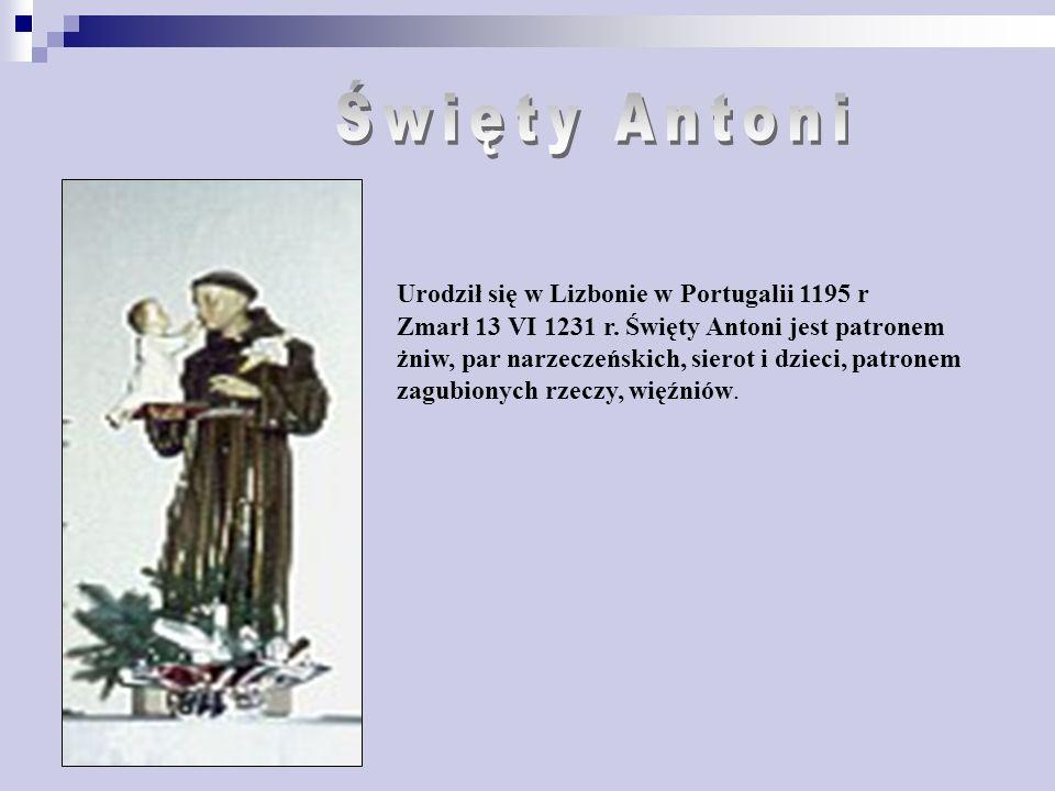 Zmarł 13 VI 1231 r.