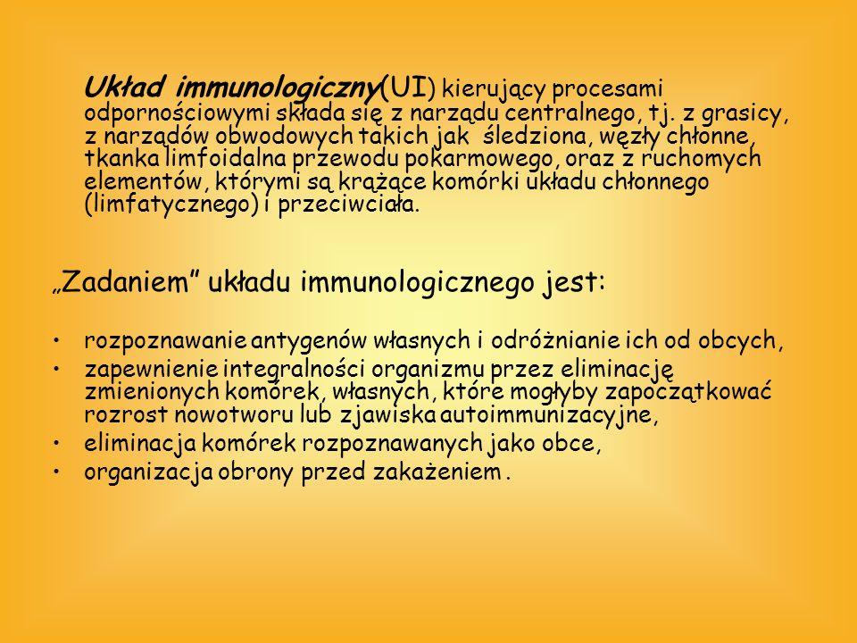 Układ immunologiczny(UI ) kierujący procesami odpornościowymi składa się z narządu centralnego, tj. z grasicy, z narządów obwodowych takich jak śledzi
