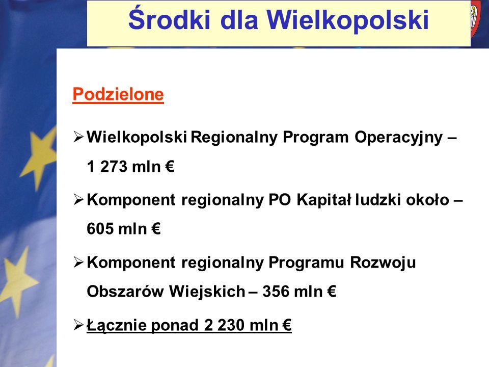 Środki dla Wielkopolski Podzielone Wielkopolski Regionalny Program Operacyjny – 1 273 mln Komponent regionalny PO Kapitał ludzki około – 605 mln Kompo