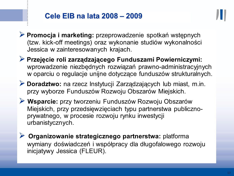 13 Cele EIB na lata 2008 – 2009 Promocja i marketing: przeprowadzenie spotkań wstępnych (tzw.