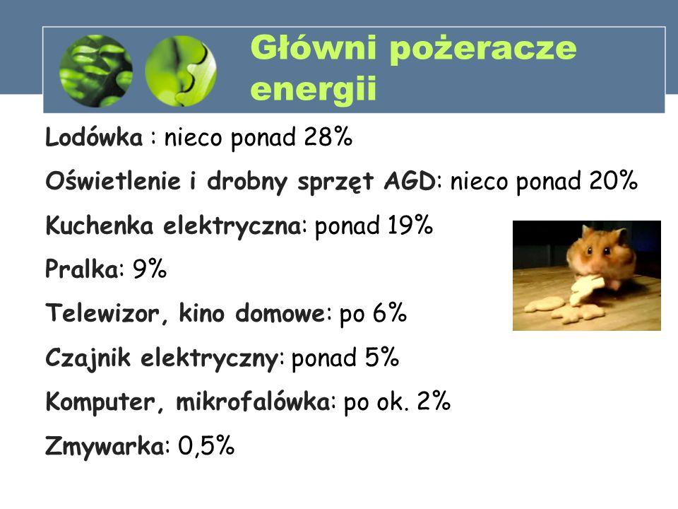 Główni pożeracze energii Lodówka : nieco ponad 28% Oświetlenie i drobny sprzęt AGD: nieco ponad 20% Kuchenka elektryczna: ponad 19% Pralka: 9% Telewiz